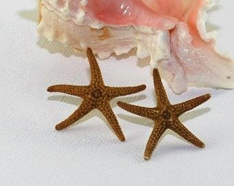 Real Brown Starfish Earrings, Mermaid, Beach Wedding, Sterling Silver, 14k Gold Filled Post, Shell Earrings, Beach Gifts, Beach Accessories