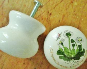 Ceramic Cabinet or Drawer Pulls, Knobs
