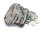 Fabric Coin Purse - Framed Clutch Purse - Printed Linen - Antique Bronze Frame - Large coin Purse