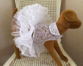 Romantic Swirls Dog Dress