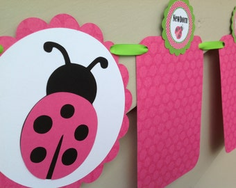 Ladybug First Year Photo Banner