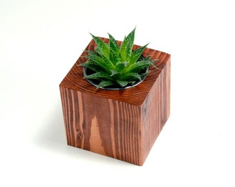 Small Wood Cube Succulent Planter - Natural Wood Planter, Modern Succulent Planter, Succulent Pot, Succulent Terrarium (Plants NOT Included)