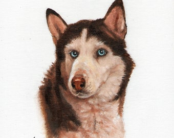 New Original Oil DOG Portrait Painting SIBERIAN HUSKY Art Puppy Artist Signed Artwork
