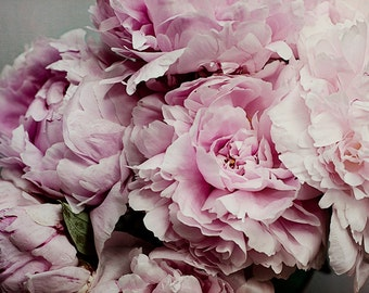 Peony Print, Pink Flower Photograph, French Country Wall Art, Shabby Chic Decor, Pastel Foyer Art, Oversized Photography, Floral Artwork