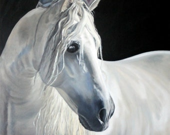 "Original Oil Painting: White Horse on Black Background ""Andalusian Beauty"""