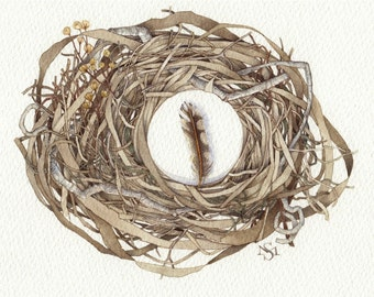 rustic woodland birds nest spotted feather original art watercolor OOAK painting earth tones gift unique nature