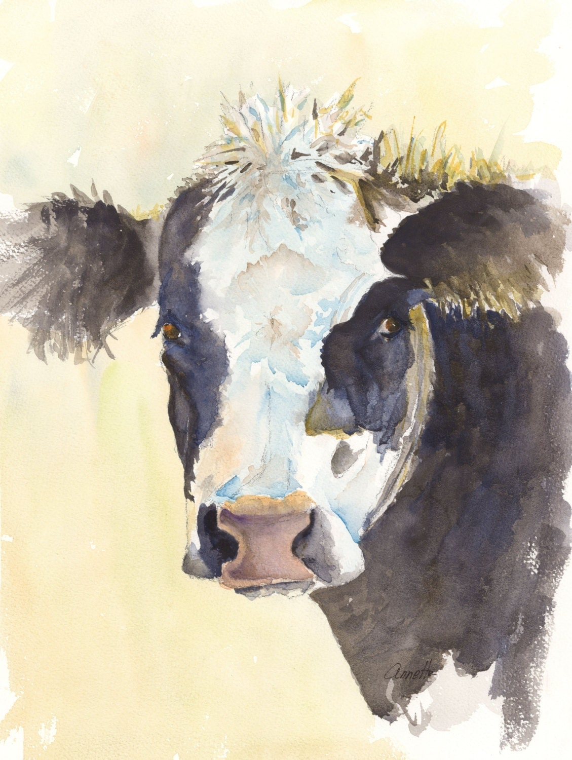 Angus cow watercolor painting print cattle art print canvas for Cow painting print