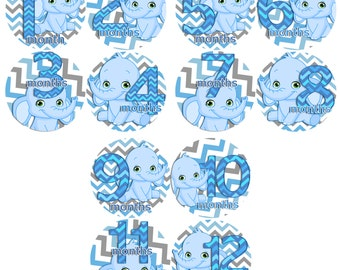 Baby Monthly Stickers 1 to 12 months Bodysuit Romper Stickers - Month to Month Baby Stickers Monthly Baby Stickers - BLUE CHEVRON ELEPHANTS
