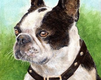 Personal Pet Portraits, and People Too! Color or Charcoal