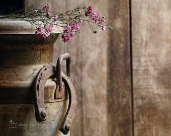 Farm Photography, Rustic Country Decor, Shabby Chic Farmhouse Wall Art Print, Horseshoe Photograph |'Lost Luck'
