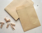 Custom Order for Sonya: BULK BUY Mini Kraft seed envelopes 9cm x 13cm - set of 500