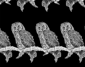 Fat Quarter Gothic Glam Owls Black Halloween Cotton Quilting Fabric Benartex