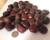 Genuine surf tumbled sea beans 40 pc