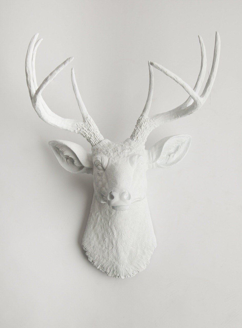 zoom - Animal Head Wall Decor