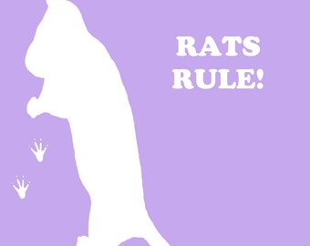 Vinyl Rats Rule Window Decal
