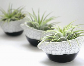 Black and white Ceramic Plant Pots, Set of  three