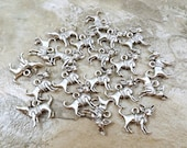 20 Pewter Chihuahua Charms - 5496