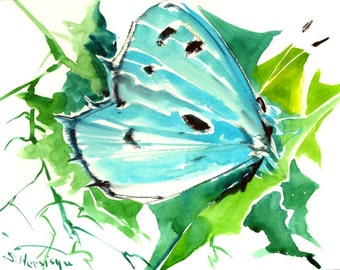 Holly Blue Butterfly, original watercolor painting, 9 X 12 in,sky light  blue green wall art, animal art,
