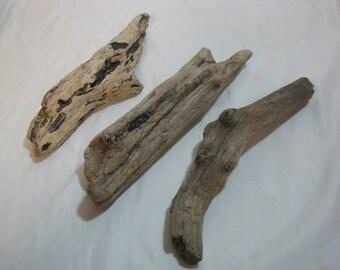 Driftwood Pieces - Bulk Driftwood - Beach Wood - Craft Supplies - 3 Round Shaped Pieces