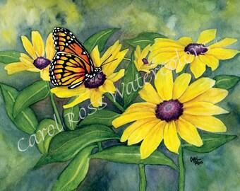 Black-eyed Susan - Giclee Watercolor Print