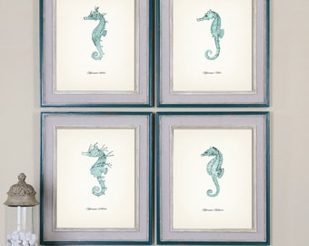 Seahorses Vintage Print Set - Blue - Fine art prints of a vintage natural history antique illustration