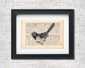 Bird on a branch Vintage Illustration Dictionary art print - Upcycled dictionary art - Book print page art #058
