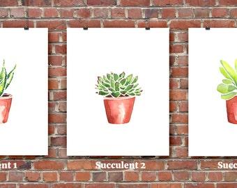 Individual Succulent Prints