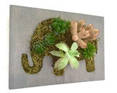 Mother's Day Gift || CUSTOM COLOR: Elephant Shaped Succulent + Cactus Vertical Garden  / Living Wall / Wall Planter