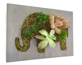 CUSTOM COLOR: Elephant Succulent + Cacti Vertical Garden | Vertical Planter | Living Wall | Wall Planter | Hanging Planter | Wood Pla
