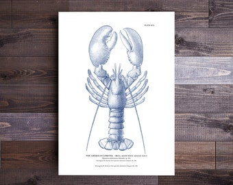 Lobster Print in Blue- Maine Poster Beach Art Nautical Decor Ocean Print Wall Art Beach Art Nautical Print Lobster Art Valentine's Day Gift