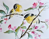 ORIGINAL Watercolor Painting,Yellow Birds on a Branch and Pink Flowers Illustration 6x8 inch