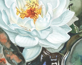 Water Lily ORIGINAL watercolor painting, FREE shipping