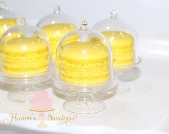 Mini Cake Stand with Dome 6 pack
