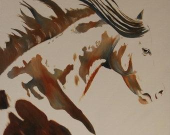 "Original Oil Painting, Horse Painting, Horses, Portrait - ""Pinto"" (24"" x 24"")"