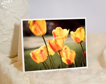 Flower Greeting Card - Fine Art Photography Notecard - Yellow Tulips - Nature Photography - Friendship Card - Blank or Personalised Card