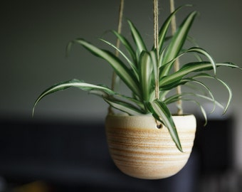 CERAMIC HANGING PLANTER//Mother's Day gift ceramic planter succulent planter hanging planter modern hanging planter hostess gift matte cream