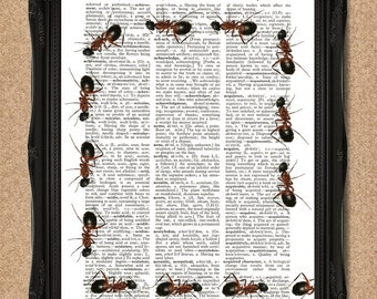 Marching Ants Print Dictionary Book Page Art A078