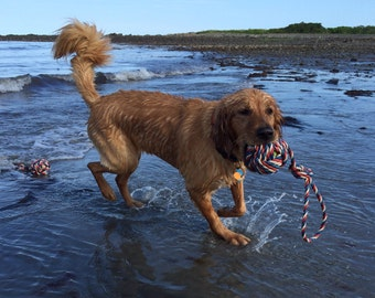 Sea and Fetch Recycled Lobster Rope Dog Toy