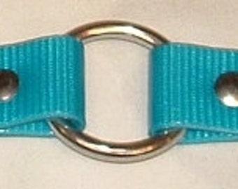 Turquoise DayGlo Collar Beta Collar Biothane Collar Dog Collar Hound Collar Hunting Collar Stainless Steel Hardware FREE NAMEPLATE