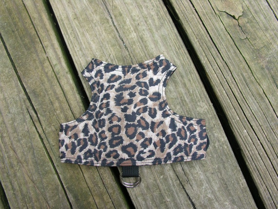 Bengal cat walking jacket harness