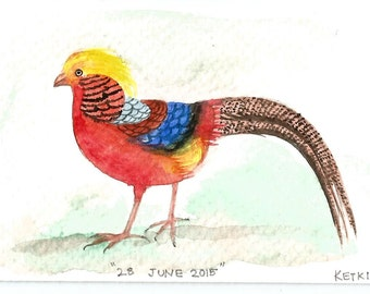 28  June 2015, Day 179 - Chinese Pheasant  - Original ACEO watercolor painting