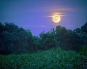 June Strawberry Moon - nature wall decor. landscape fine art print. full moon. california. night photography. strawberry moon. artistic moon