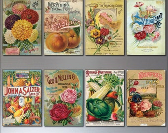 Vintage Botanical / Horticultural seed packet fridge magnets - set of 8 - No.2