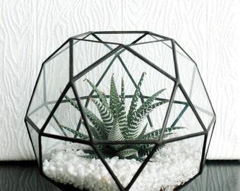 Large Geometric Glass Terrarium / Icosidodecahedron / Globe Terrarium / Handmade Glass Planter / Stained Glass Terrarium