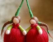 Cherries, Waldorf inspire...