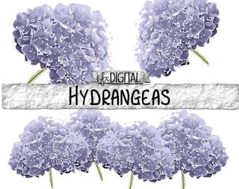 Blue Hydrangea Clipart - Hydrangea Flower Clipart, Blue Flower Graphics, Hydrangea Illustration, Flower Vector, Blue Wedding Clipart, Chic