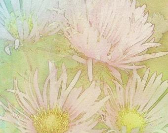 Pastel Flowers, Fine Art Print