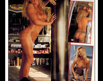 "Mature Celebrity Nude : Pamela Anderson Single Page Photo Wall Art Decor 8.5"" x 11"""