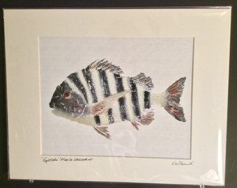 8x10 Gyotaku fish rubbing - Sheepshead