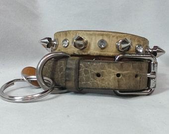 Custom Alligator Skin Dog Collar
